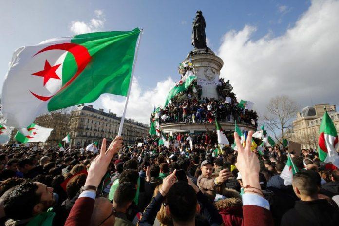 Le ridicule ne tue pas: une journaliste affirme que la France a libéré l'Algérie de