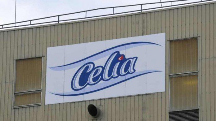 Célia-Algérie bloquée par ses employés