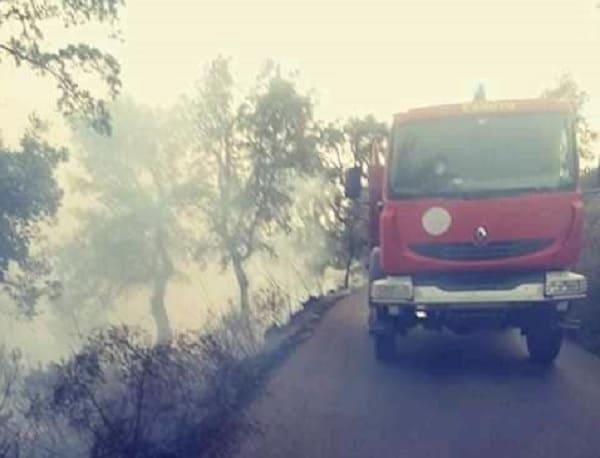 Tizi-Ouzou: 23 départs de feux en 24 heures