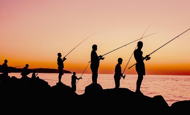 Reprise des activités de loisirs et de pêche dans les ports d'Alger